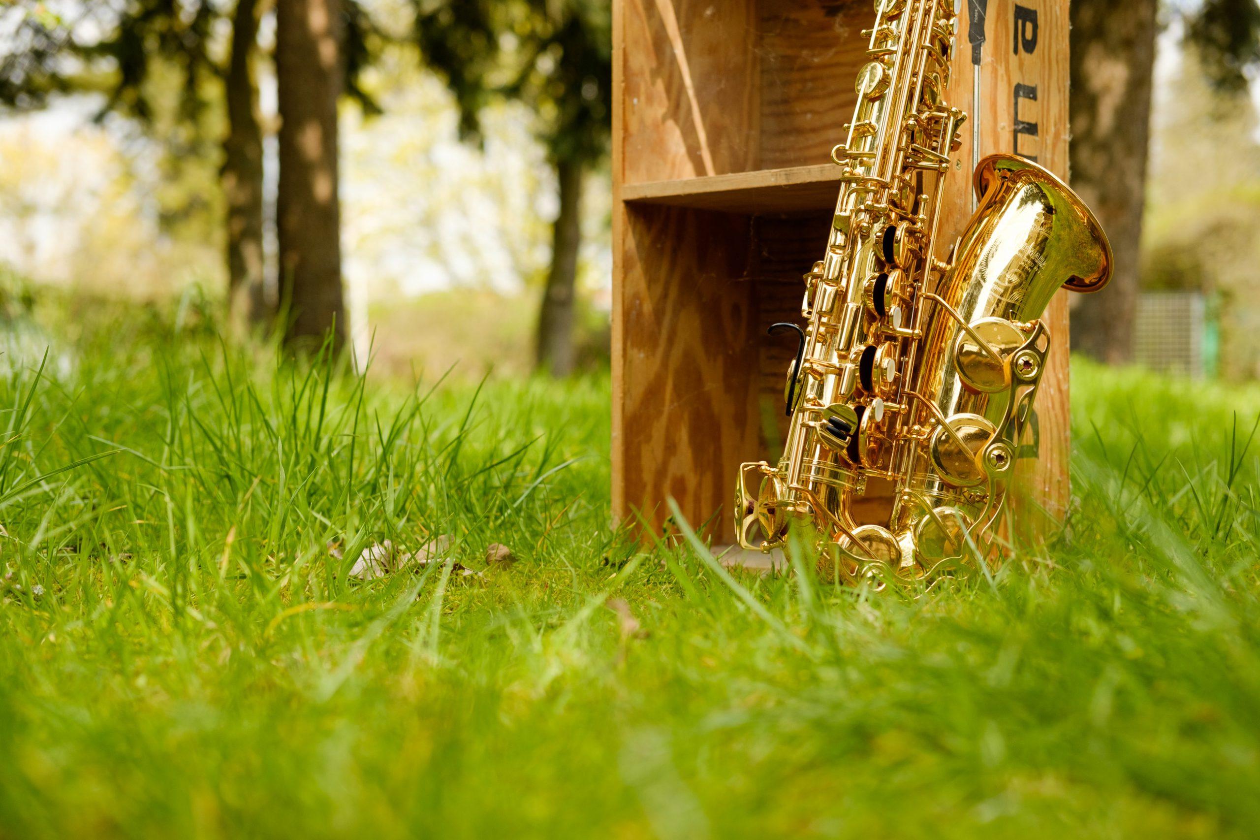 Saxophon in der Natur
